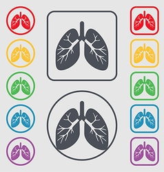 Lungs icon sign symbol on the round and square vector