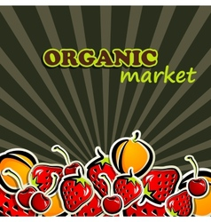 Fruit organic food concept vector