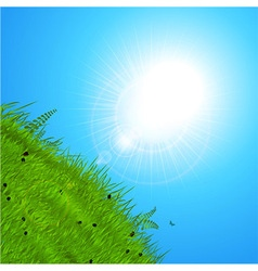 Spring sun over the hill vector