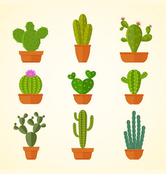 cactus decorative home plant in pots flat vector image