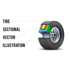 Car tire with layers sectional vector