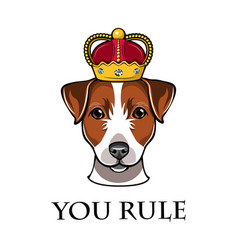 Jack russell terrier in the crown dog vector