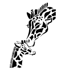 Cute giraffe family coloring vector image
