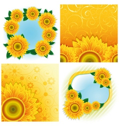 Sunflower backgrounds vector