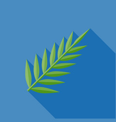 Palm or fern vector