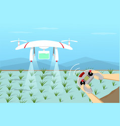 Agriculture drone fly on paddy by remote control vector