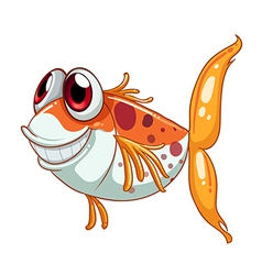 An orange fish with big eyes vector image vector image