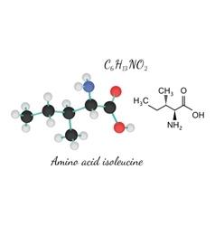 C6h13no2 amino acid isoleucine molecule vector