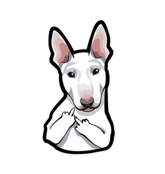 dog bull terrier with middle finger vector image vector image
