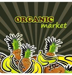 fruit organic food concept vector image
