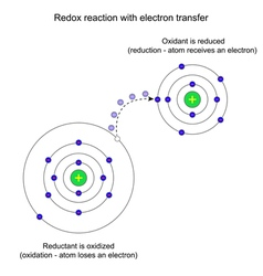Redox reaction with electron transfer vector image vector image
