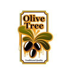 Black olives icon template for olive oil vector