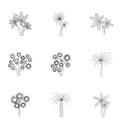 Tree palm icons set outline style vector