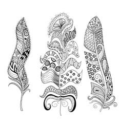 Zentangle stylized elegant feathers set hand vector
