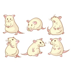 White mice vector image