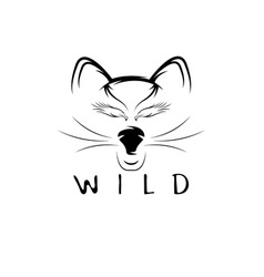 wild cat with eagle eyes design template vector image
