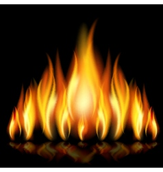 Background with flames vector