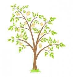 dollar tree vector image vector image