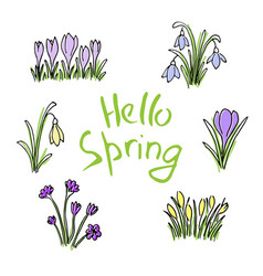 Hello spring colored sketch set first flowers and vector