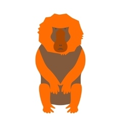 Monkey baboon vector