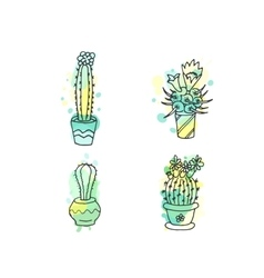 Succulent  cactus hand drawn vector