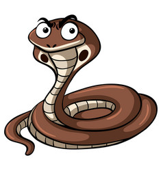 cobra snake with serious face vector image