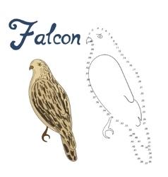 Educational game connect dots draw falcon bird vector