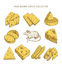 Hand drawn doodle cheese set vintage vector