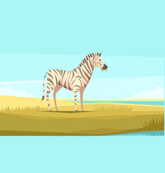 Zebra in the wild composition vector