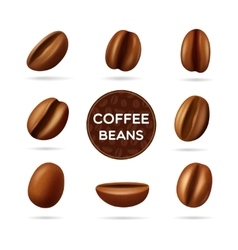 Coffee beans concept set vector