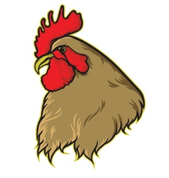 Chicken fighter vector
