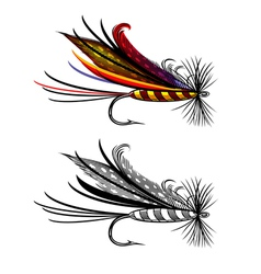 Fishing fly vector