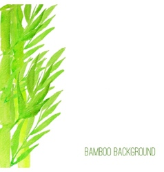 Watercolor bamboo background with green vector