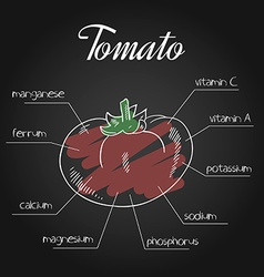 Nutrient list for tomato vector