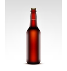 Glass Transparent Brown Bottle of Dark Red Beer vector image vector image
