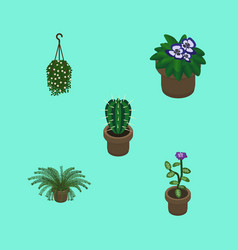 Isometric flower set of peyote blossom flowerpot vector