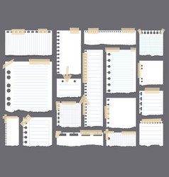 Pieces of torn white blank lined note paper with vector
