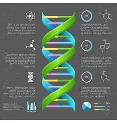 Infographic template with dna structure for vector