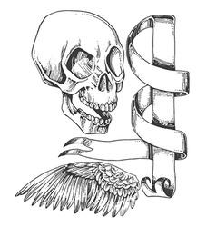 Skull wing and sroll vector
