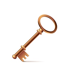 Bronze key isolated on white vector image vector image