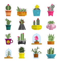 Nature succulent home cactus tropical plant vector