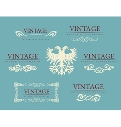 Calligraphic design elements baroque vintage set vector