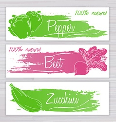 Vegetables banners with brushed stripe on wooden vector