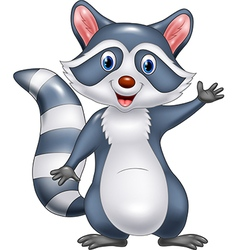 Cartoon funny raccoon cartoon waving hand vector