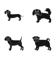 Dog animal domestic and other web icon in black vector