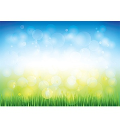 Blue sky grass vector