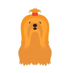 Adorable young lap-dog yorkshire terrier vector