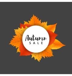 Autumn new season of sales and discounts deals vector image