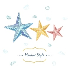 Decorative sea card with starfishes in different vector image vector image