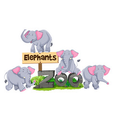 Elephants around the zoo sign vector